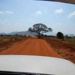 safari in kenya parco tsavo