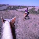 a cavallo a volterra