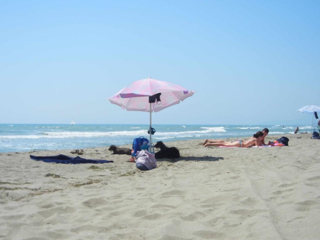 spiaggia le marze per i cani