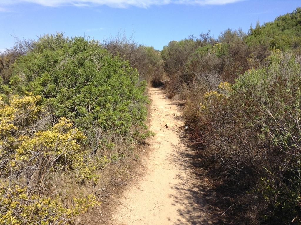 accesso alla spiaggia di baia salinedda