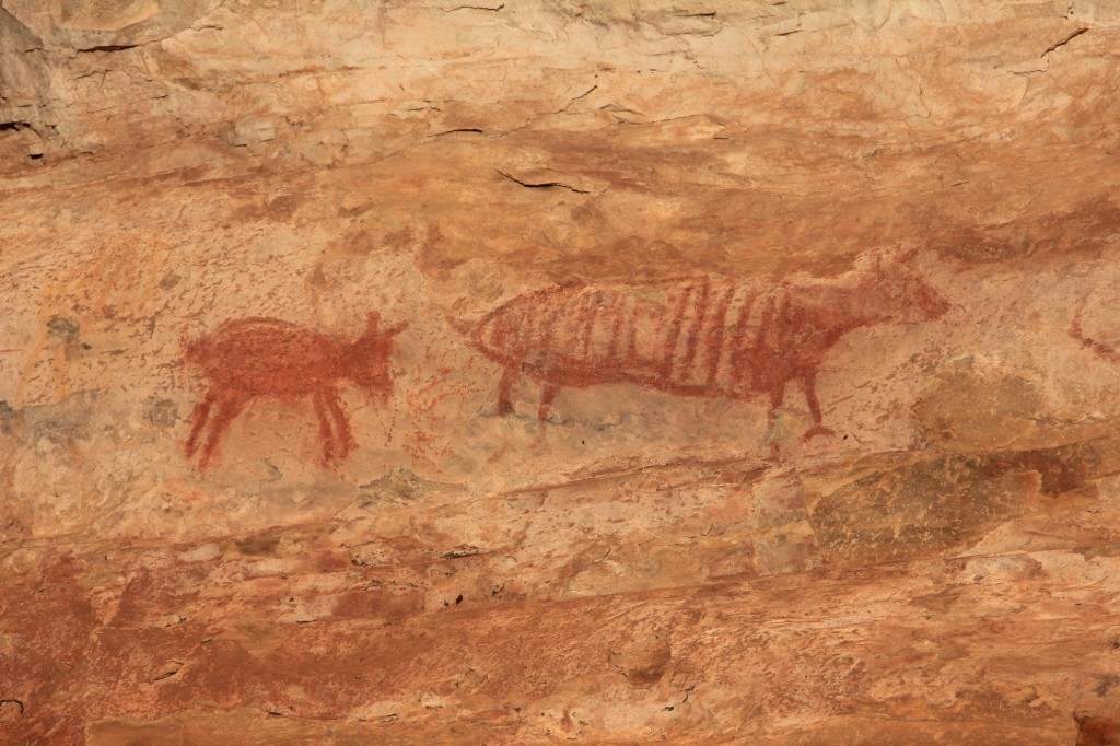 Dipinti rupestri, Baron, Brasile