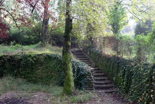 sentiero nel parco dei colli
