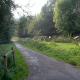 percorso ciclo pedonale parco bergamo