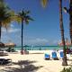 spiaggia con palme aruba