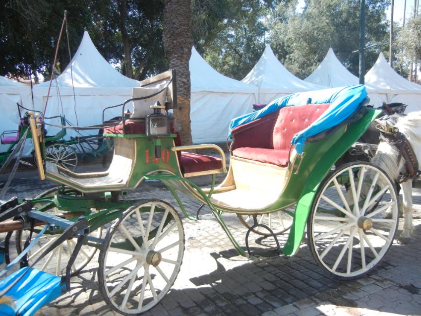 carrozze a marrakech