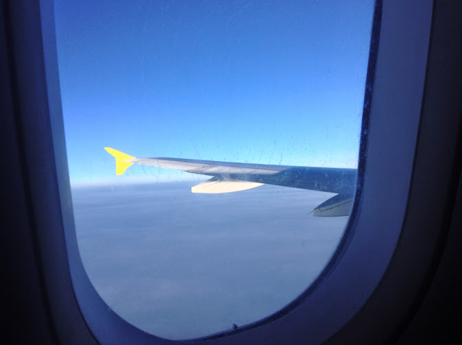ala d'aereo
