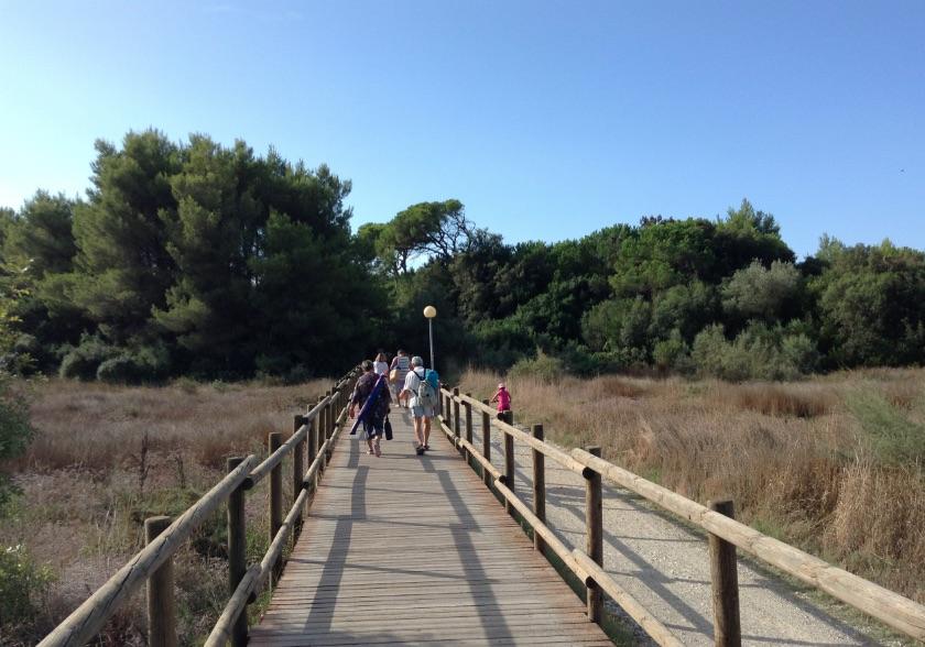 strada-che-collega-pappasole-al-mare