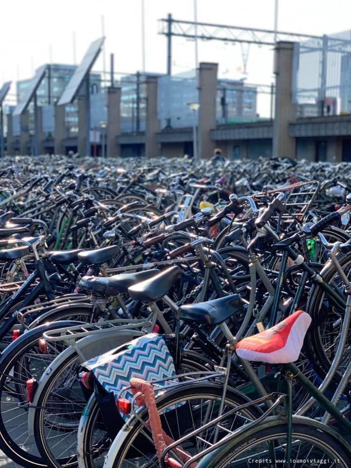 biciclette olandesi