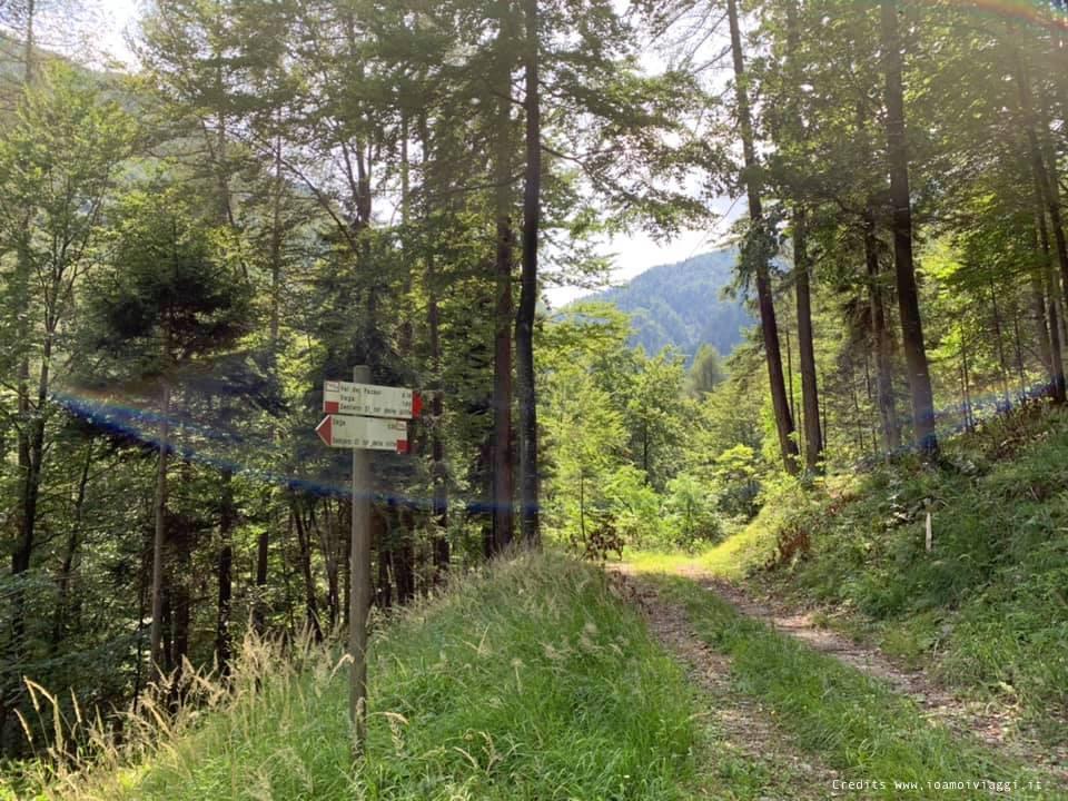 sentieri in montagna