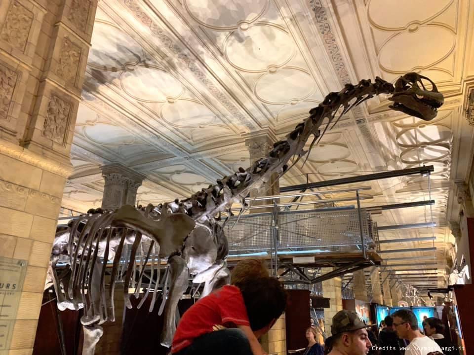 dinosauri londra